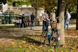 Boule-Spieler (oder Pétanque?) in Dijon. (Bild: Bild/www.flickr.com/photos/pat21)