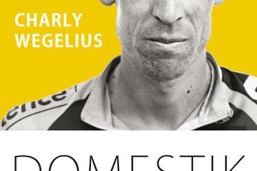 Das Coverbild von «Domestik».  (Bild: pd)
