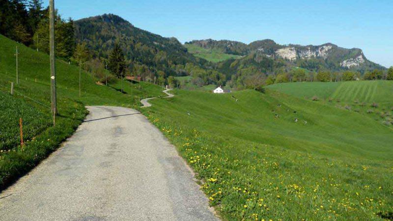 Kurz nach der Challhöchi. dem kleinen Jura-Übergang vom Kanton Solothurn ins Oberbaselbiet. | © 2016 Dominik Thali